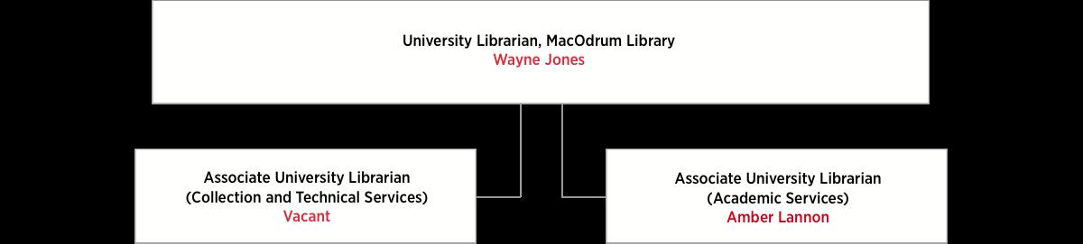 Library Organizational Chart