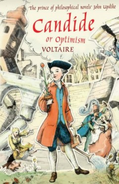 an overview of the philosophy of voltaires candide Voltaire's candide and war he felt that no theology or philosophy could accurately explain the tragedies of the world candide is composed almost entirely of.