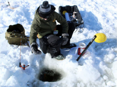 Science of winter: The day aliens stole all the fish in a lake