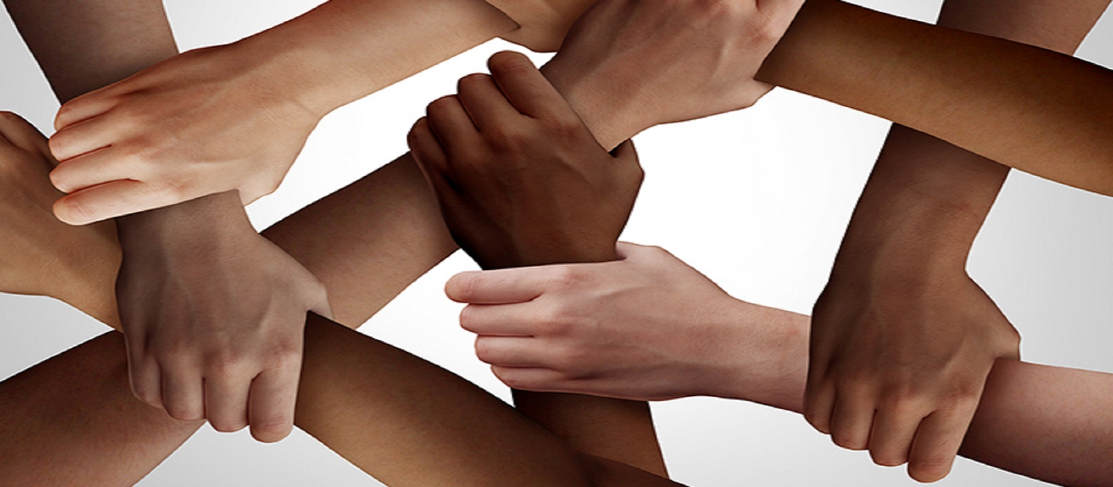 Banner image for Our Commitment to Equity, Diversity and Inclusion