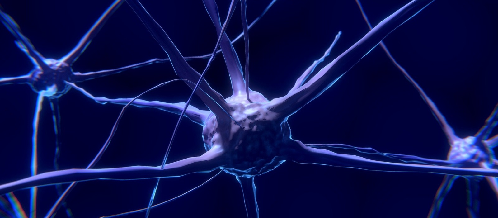 Banner image for Neurobiology and Behaviour