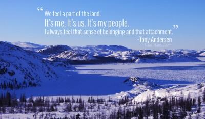 Tony Andersen Quote