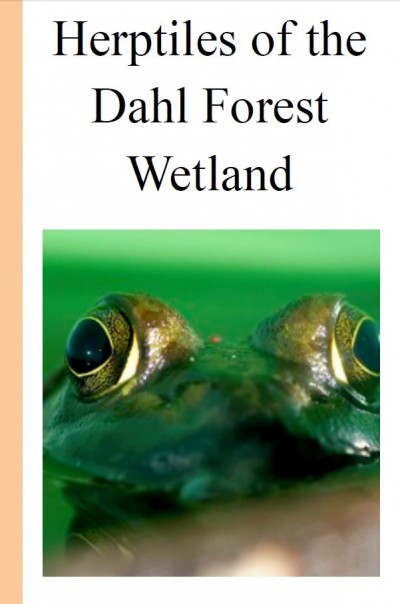 Image of the Dahl Forest Wetland Report front page, featuring a large green frog peeking up from the surrounding green water.