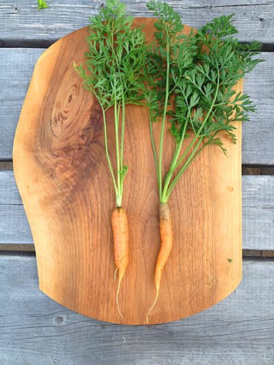 two carrots on a cutting board