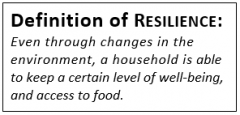"Text box with the following content: ""Definition of RESILIENCE: Even through changes in the environment, a household is able to keep a certain level of well-being, and access to food."""
