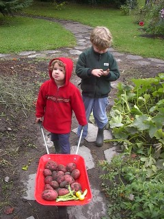 Children help with SLOE's autumn harvest. ©SLOE