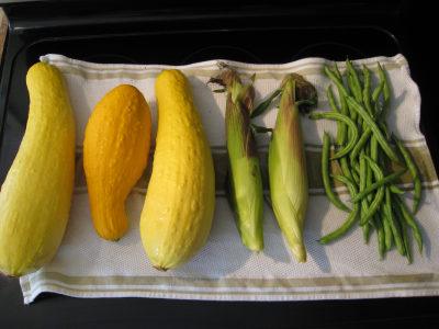 Harvest from a Three Sisters crop (squash, corn, and beans) laid out on a white tea towel.