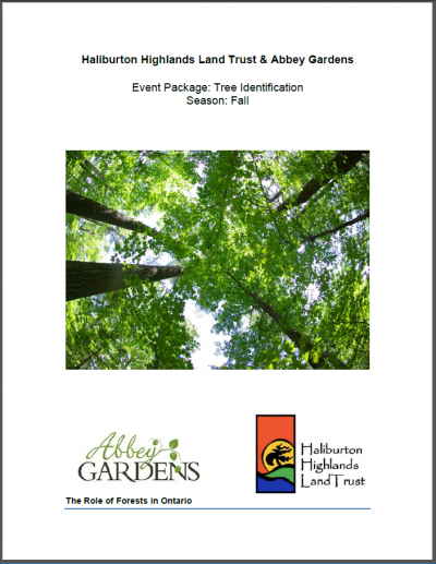 Title page of a report on identifying different tree species.