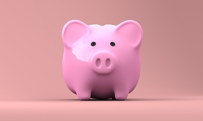 A pink piggy bank faces the camera head on.