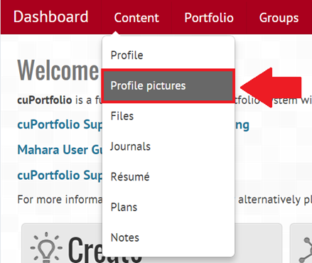 Screenshot of dashboard, profile picture highlighted