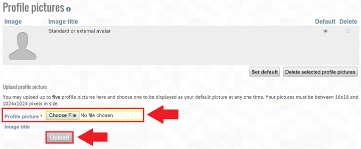 Screenshot of profile picture page, choose file option highlighted