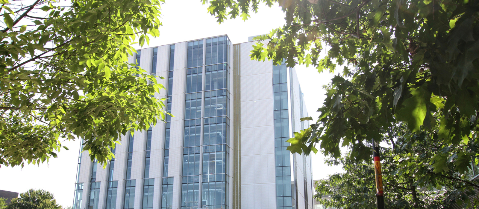 Banner image for Faculty of Science