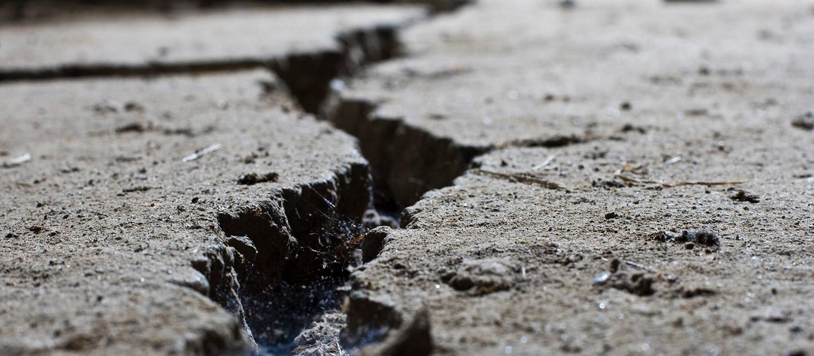 Banner image for Earthquake