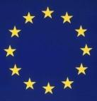 Thumbnail - EU-flag21-143x143
