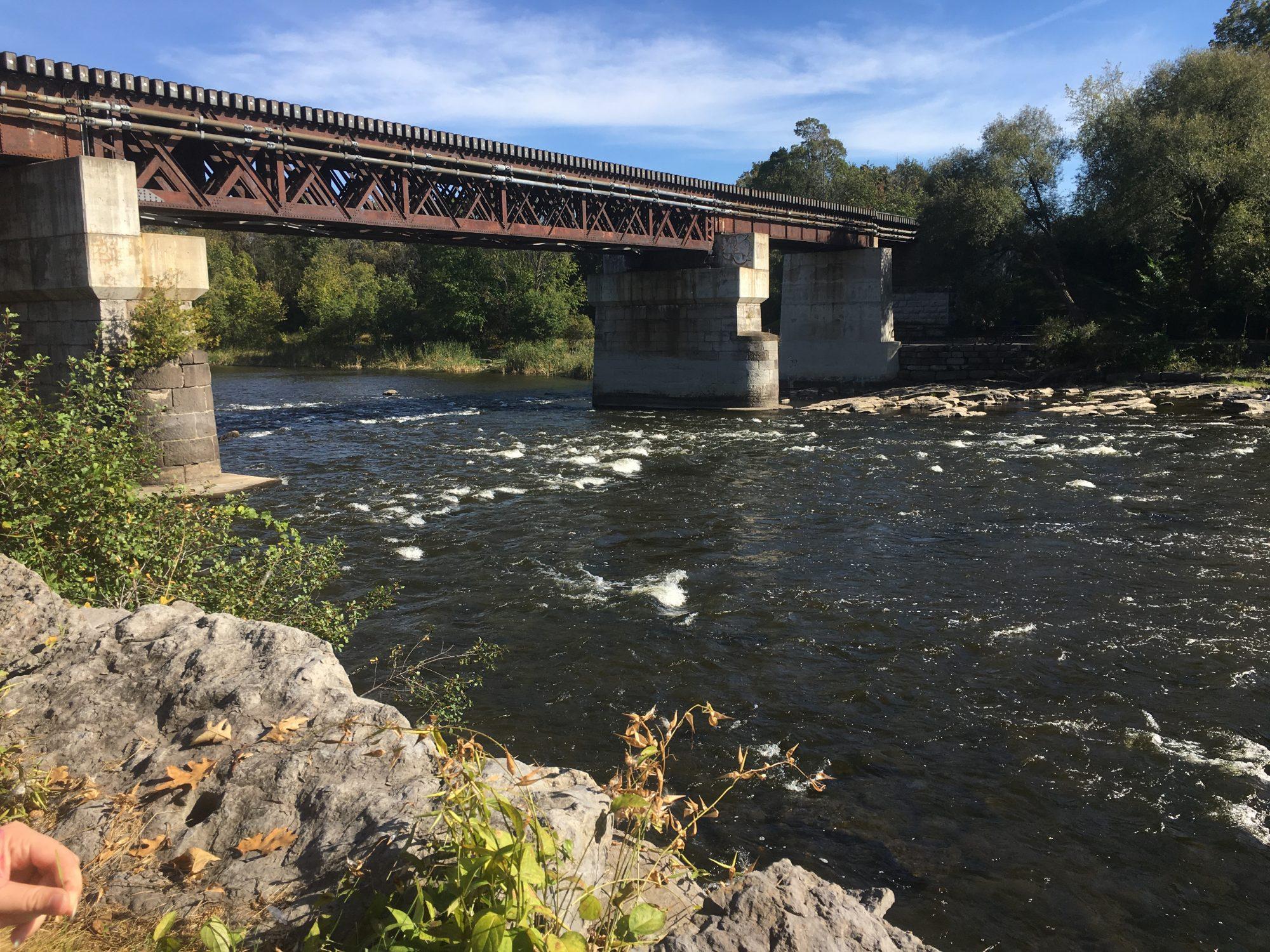 The Rideau River as it flows through the Carleton campus.