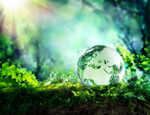 View Quicklink: Environmental Studies