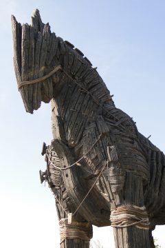 Replica of Trojan Horse