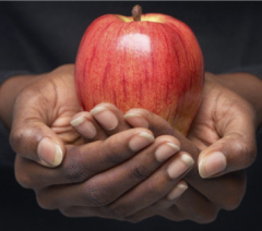 Hands holding out an apple