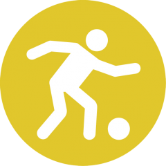 Icon: Individual playing with ball
