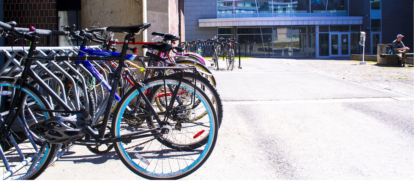Banner image for Bike Rentals on Campus