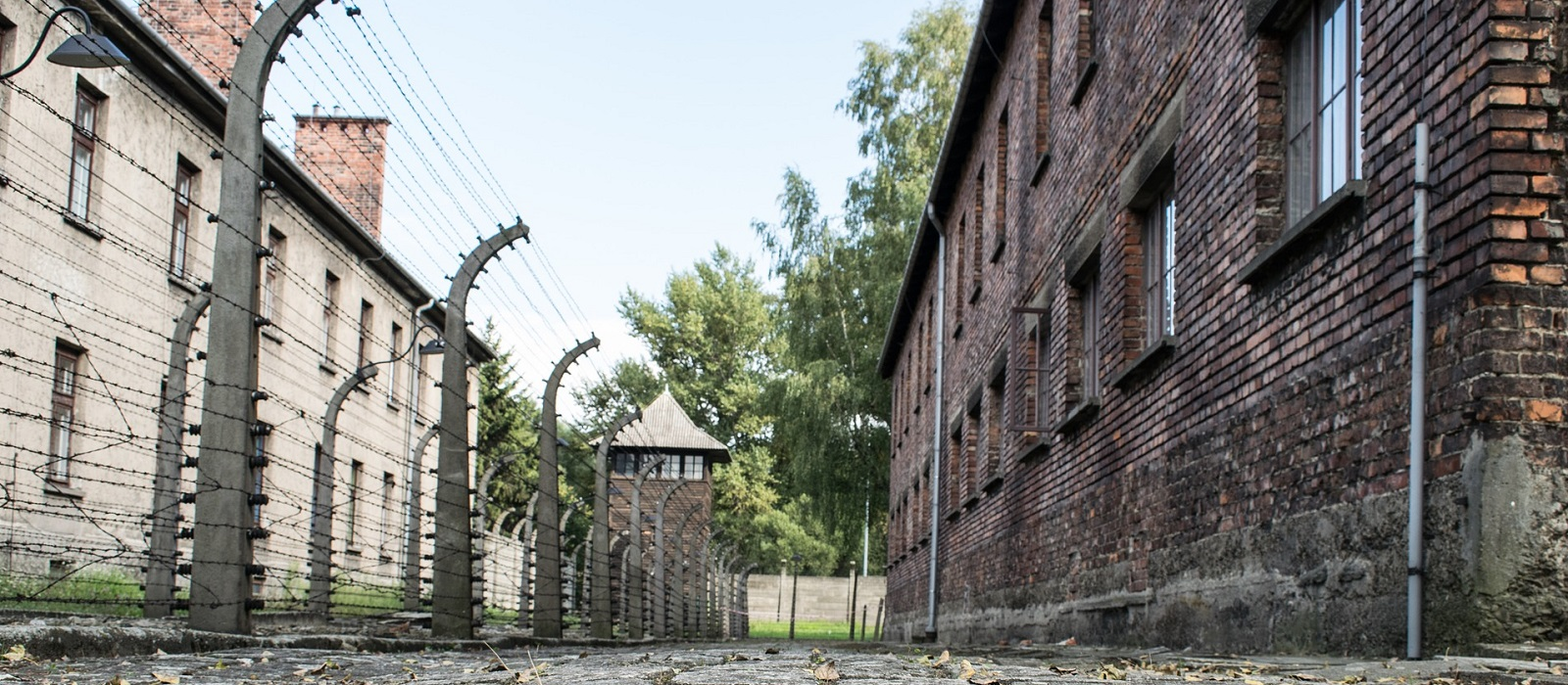Banner image for Holocaust Virtual Museum