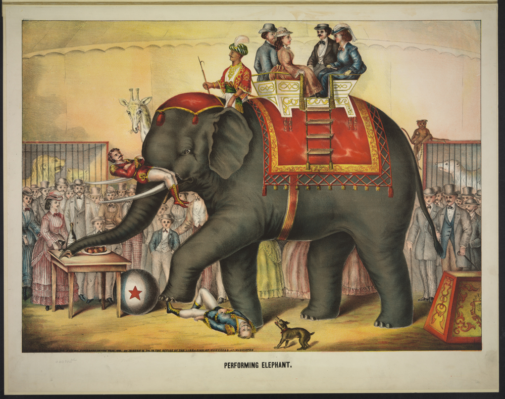 Performing Elephant. Library of Congress Prints and Photographs Division Washington, D.C. 20540 USA.