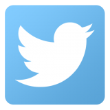 twitter logo of white bird on blue background