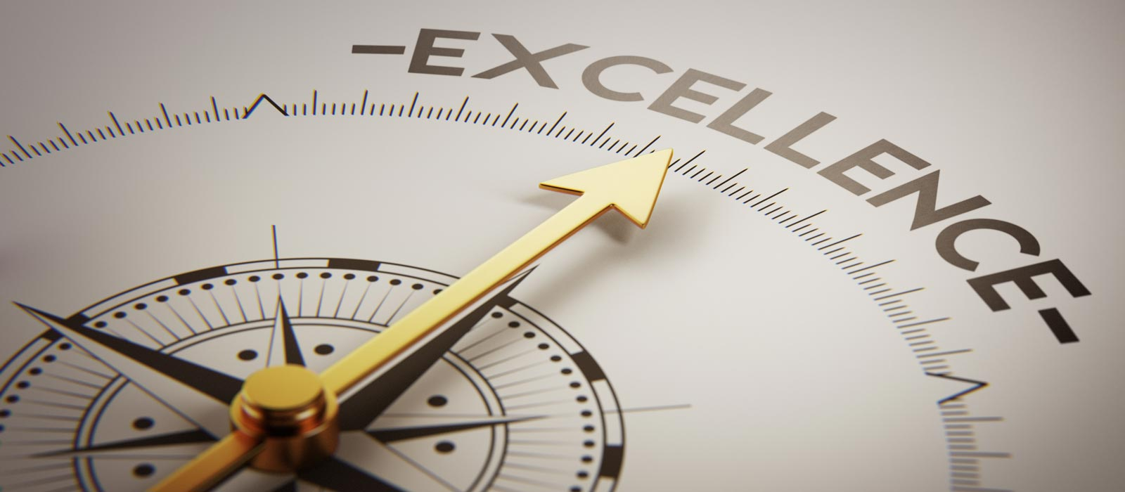 Banner image for Service Excellence