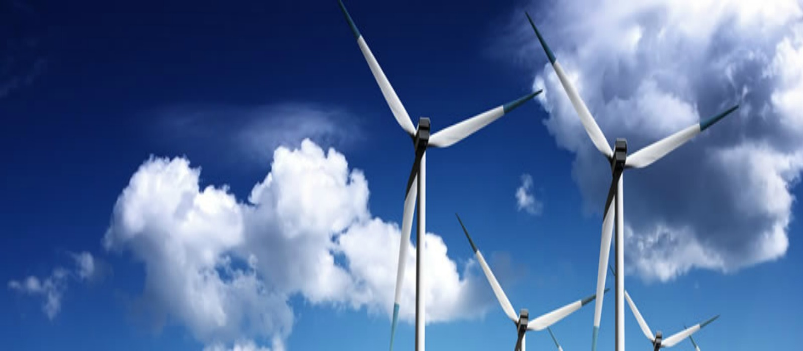 Banner image for Sustainable and Renewable Energy