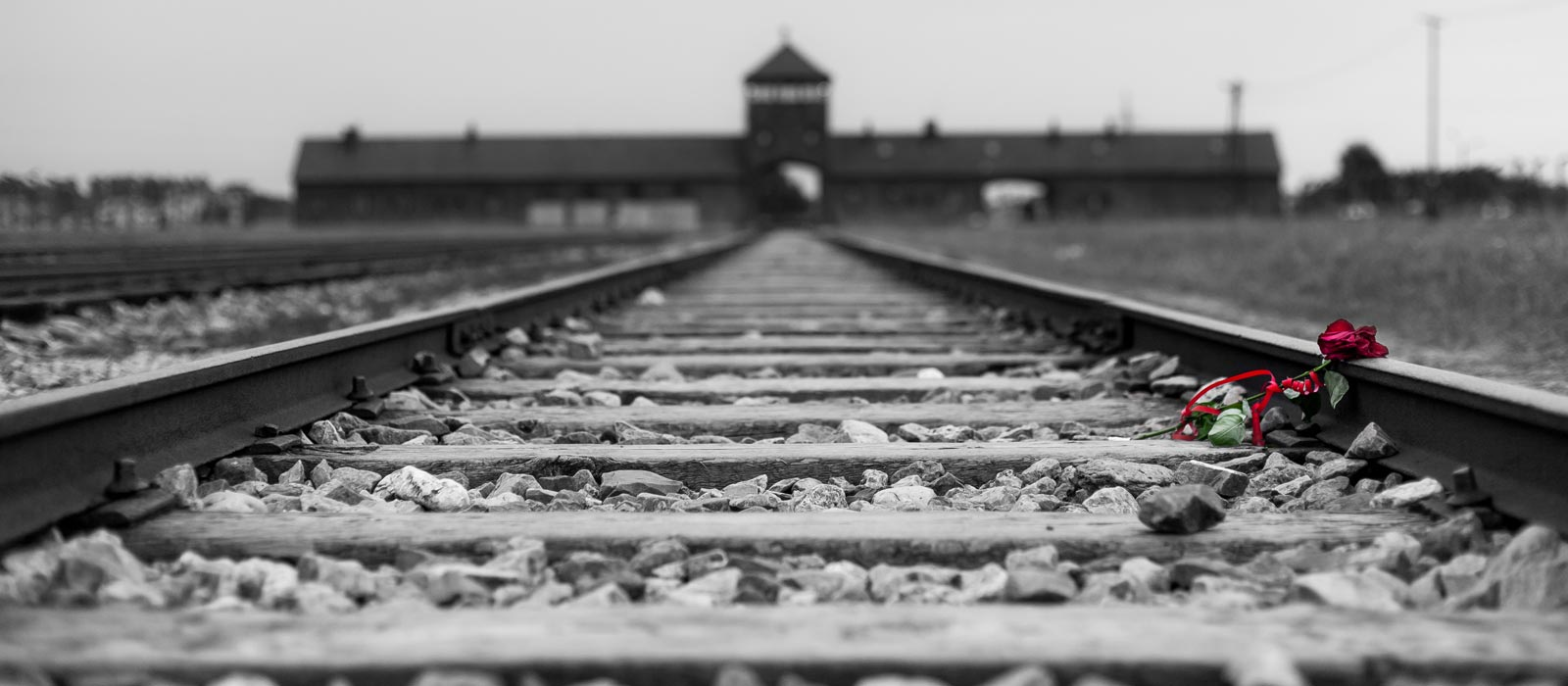 """who is responsible for the holocaust """"it wasn't our mothers, nor our fathers, who are responsible for the crimes of the  holocaust, which were committed by german and nazi."""