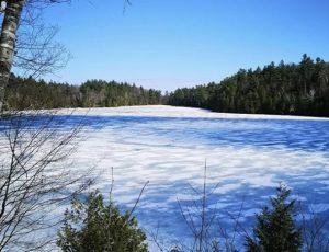 photo of winter scene
