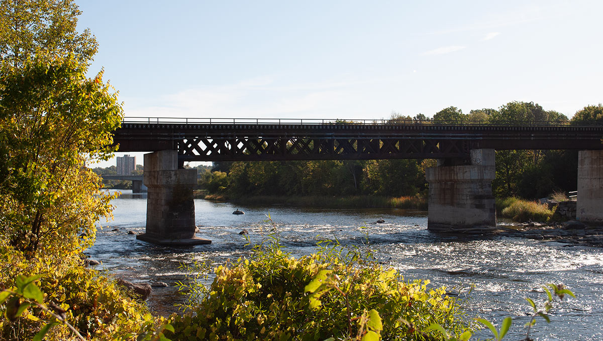 The Rideau River flows past the Carleton campus.
