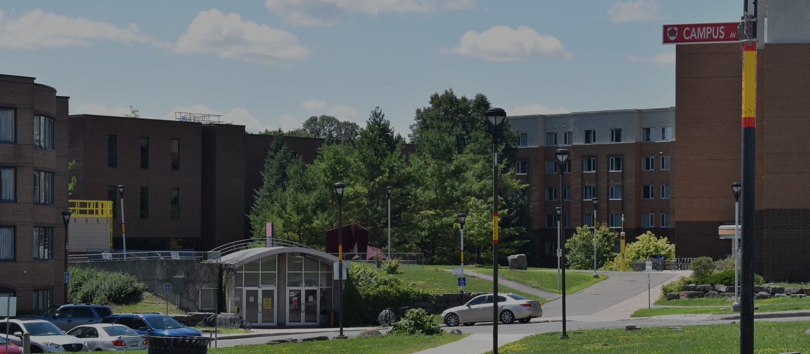 Banner image for Carleton Central How To Videos