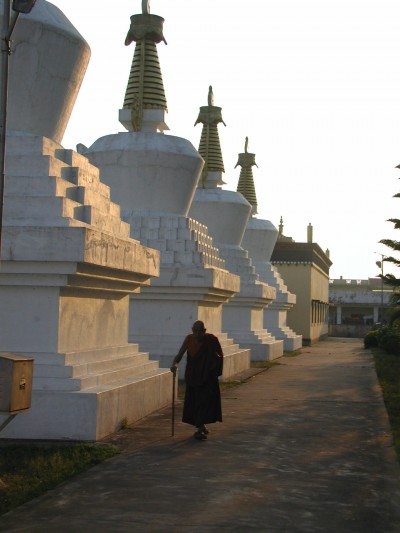 Stupas at Namdroling, India