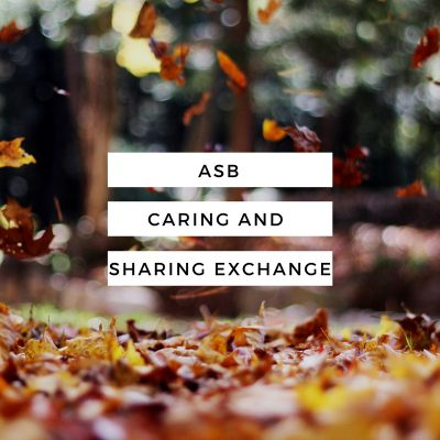 Day 44: The Alternative Spring Break volunteers go to the Caring and Sharing Exchange.