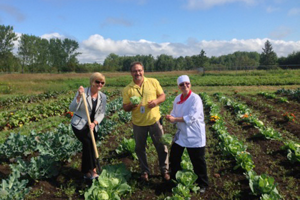 Read more: Knezevic releases report on On-site Food Production