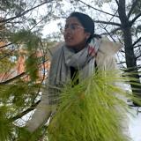 Sonya under a pine tree