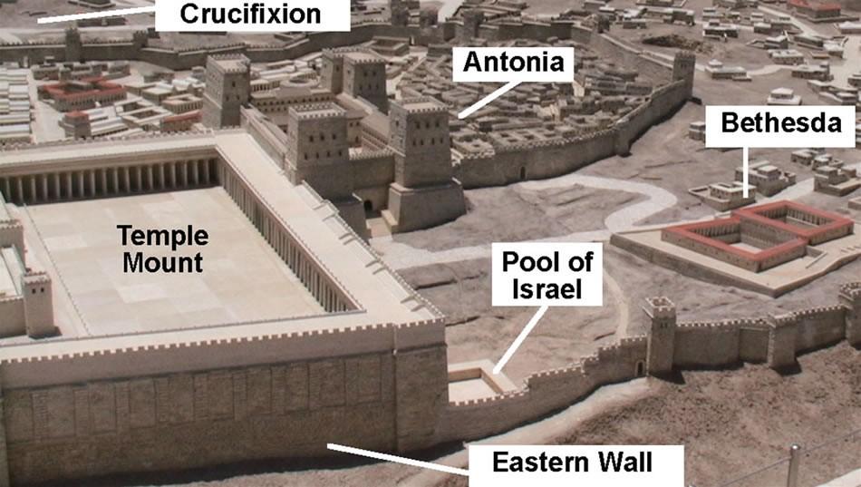 Tiffany Mcdougall Pools Of Bethesda Study Israel