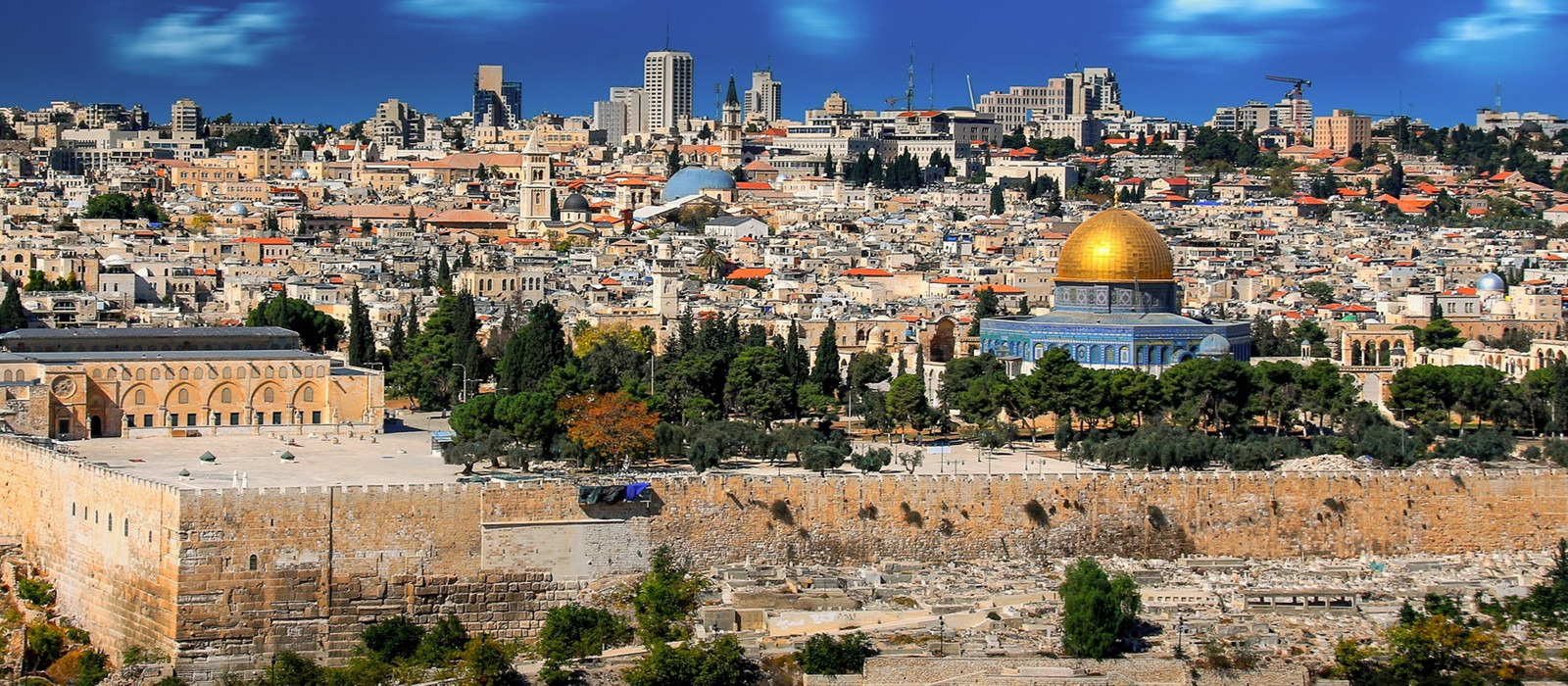 Banner image for Israel Fun Facts