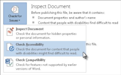A screenshot of where to find the Accessibility Checker